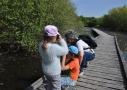 Observation de la nature en Brenne