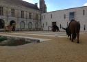 Musée de la Préhistoire du Grand Pressigny en Sud Touraine