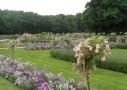 Jardins fleuris à Chenonceau