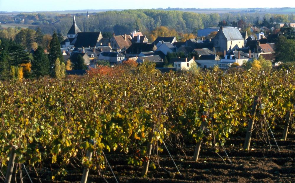 Les Vins Et Fromages Du Val De Loire Gite Avec Piscine Pres
