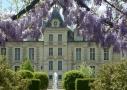 Chateau de Cheverny - les aventures de Tintin
